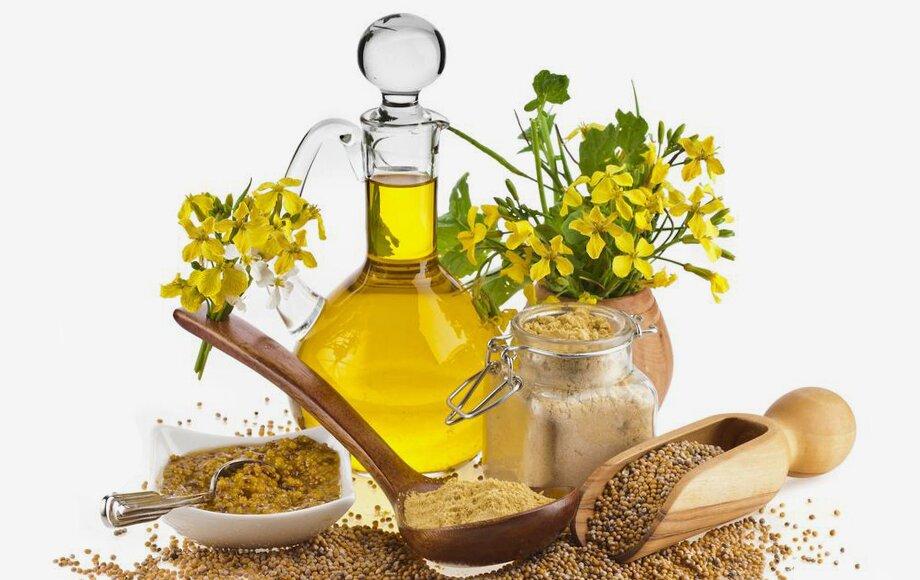 Рыжиковое масло - польза и вред уникального продукта