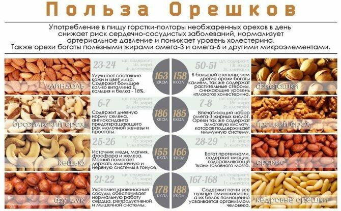 Кедровые орехи: польза для мужчин, рецепты для потенции