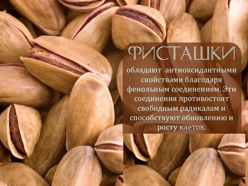 Кедровые орешки польза для мужчин