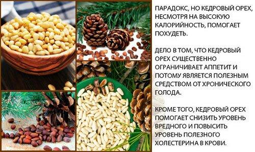Польза кедровых орехов для женщин, рецепты для здоровья, противопоказания