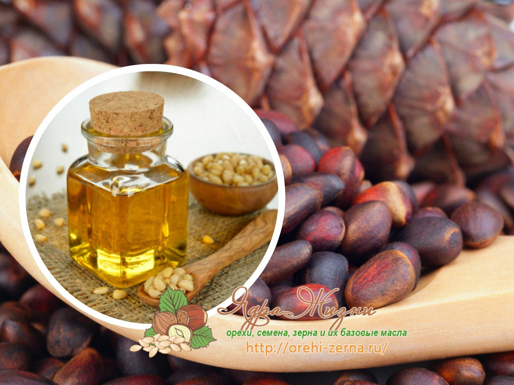 Кедровые орехи для женщин: какие витамины содержатся, чем полезны, кому могут навредить