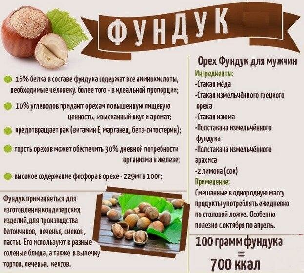 Кедровый орех: полезные свойства и вред для взрослых и детей | здоровье и красота