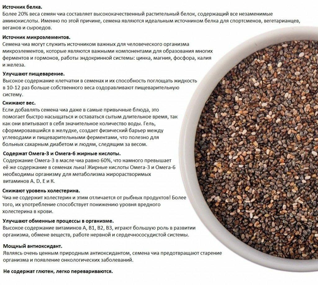 Полезные свойства семян чиа для женщин - как правильно употреблять |